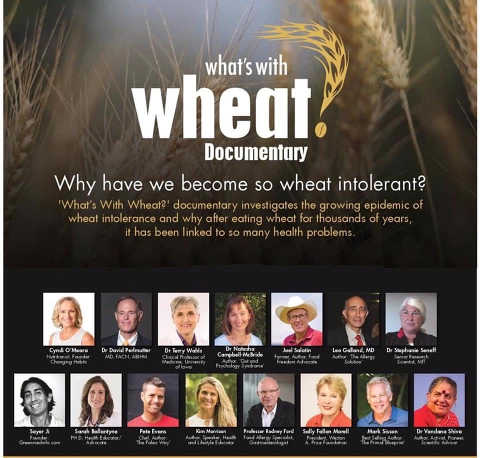 Ten Awesome documentaries about Natural Wellness  -